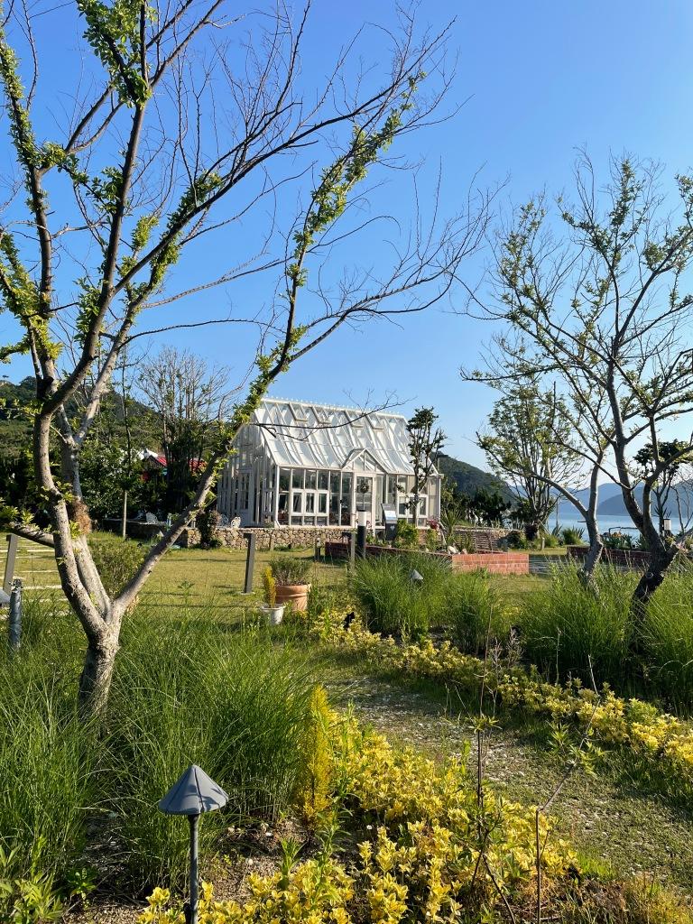 Back garden and nursery